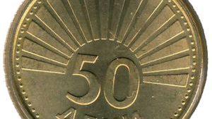50-DeniSeagull